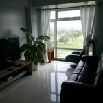 2 - 9DE Living Room